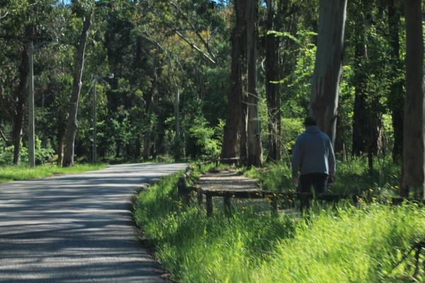 Mobilidade sustentável à descoberta de Monsanto